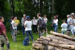 Totholz für Insekten / Sommer 2016 / Seidlhof