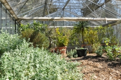 Impression Folienhaus / Frühjahr 2016 / Seidlhof