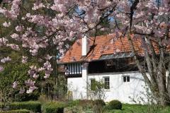 Altes Fachwerkhaus mit alter Hofküche / Frühjahr 2016 / Seidlhof