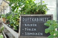Duftkabinett / Frühjahr 2016 / Seidlhof