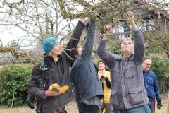 Obstbaumpfleger - Aufbaukurs / März 2017 / Seidlhof