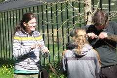 Veredelungskurs, Praktischer Teil / Kurs 2016 / Seidlhof