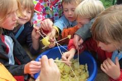 Aktionen_KJR_Kartoffeln_2011_02