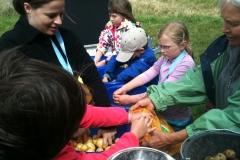 Aktionen_KJR_Kartoffeln_2011_03