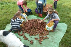 Aktionen_Naturlandkartoffeln_2011_01