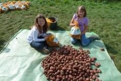 Aktionen_Naturlandkartoffeln_2011_07