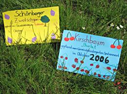 Damit klar ist, wer hier am Werke war: Eine Kindergartengruppe hinterließ ihre Visitenkarte auf der Streuobstwiese