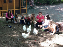 Die Hühner an der Grundschule in Krailing